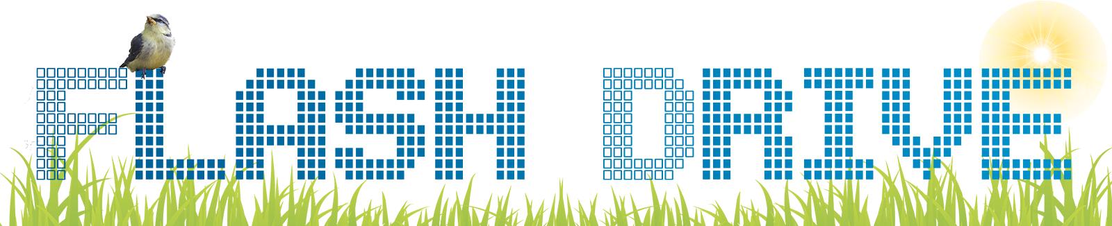 Сайт Логотип весна4